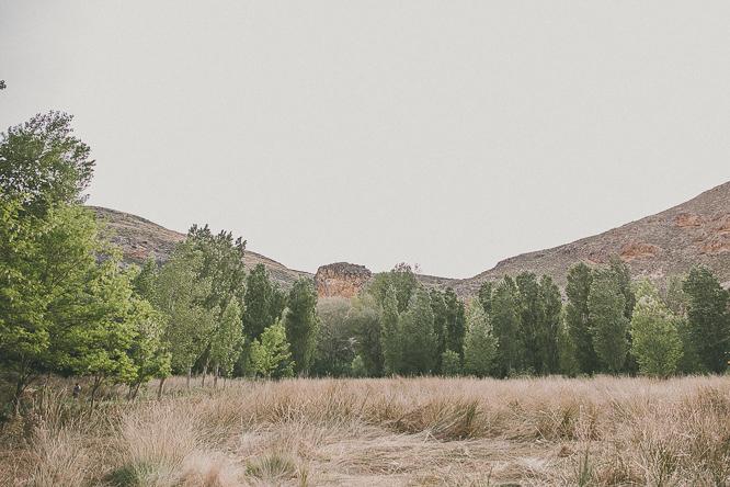fotografo boda navarra cintruenigo forester 67 Itziar + Gorka | Boda en el bosque