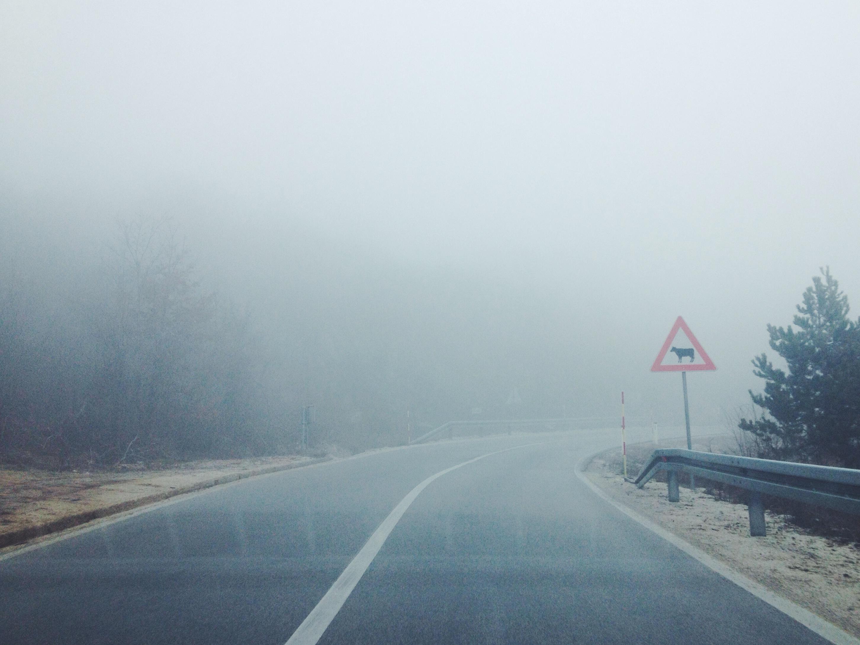 fotografo bilbao forester11 Winter trip