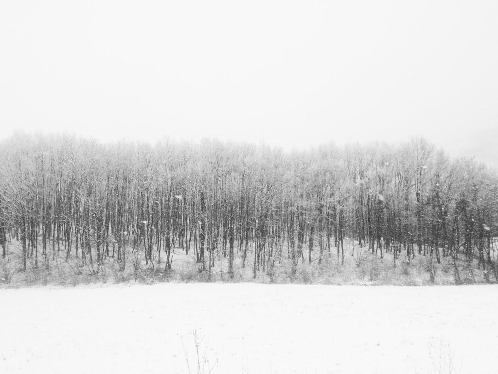 la foto 2 1024x768 Winter trip