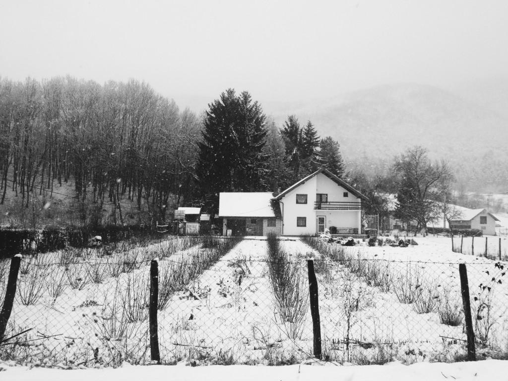 la foto 2 2 1024x768 Winter trip