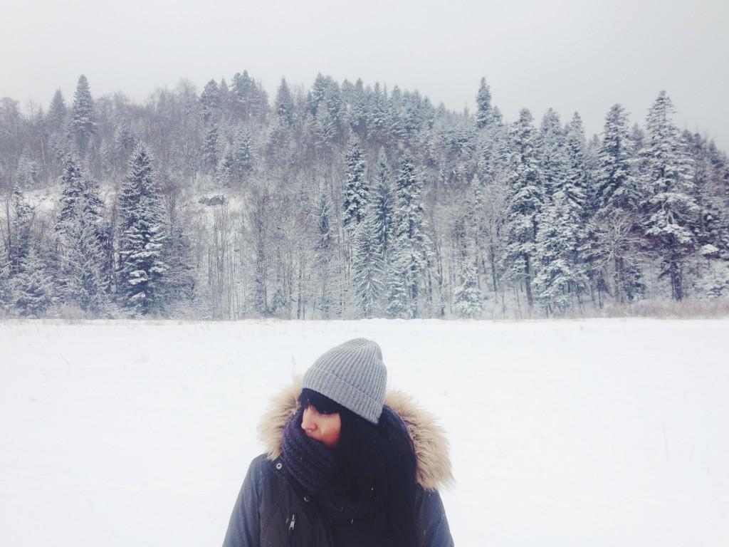 la foto 3 1024x768 Winter trip