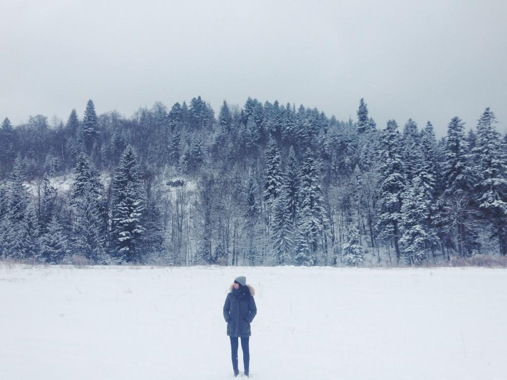 la foto 3 2 1024x768 Winter trip