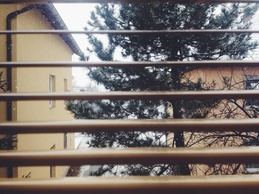 la foto 4 1024x768 Winter trip
