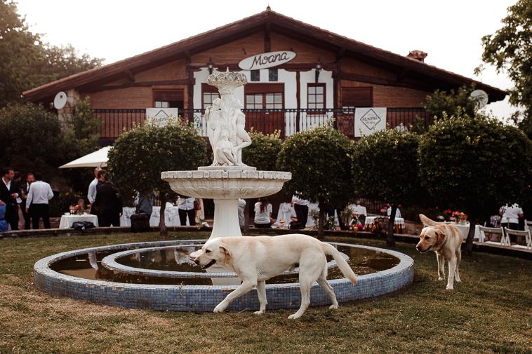 fotografo de bodas bilbao 1258 Lara & Patxi | Boda surfera en Barrika