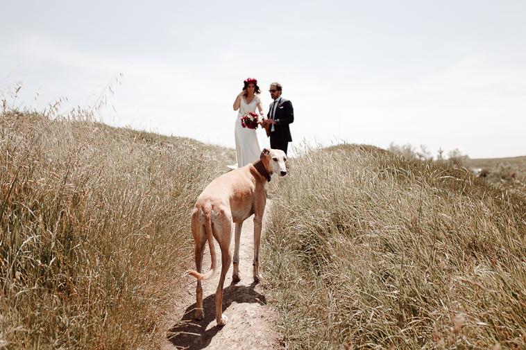 fotografo de bodas bilbao 842 Lara & Patxi | Boda surfera en Barrika